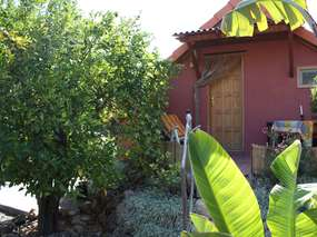 Finca cottage in the south of Tenerife (Guia de Isora)