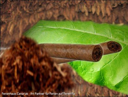 Handgerollte Zigarren Aus Teneriffa